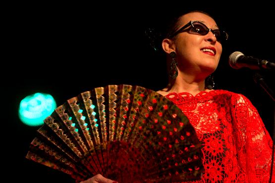Una imagen de la cantante Martirio en plena actuación