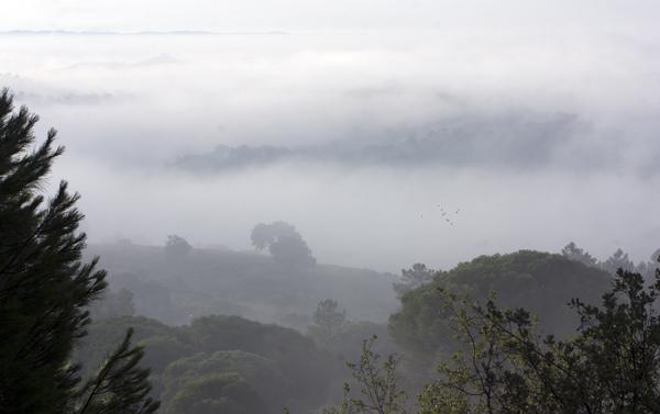 Imágene de nieblas en la mañana de hoy en la localidad onubense de Minas de Riotinto