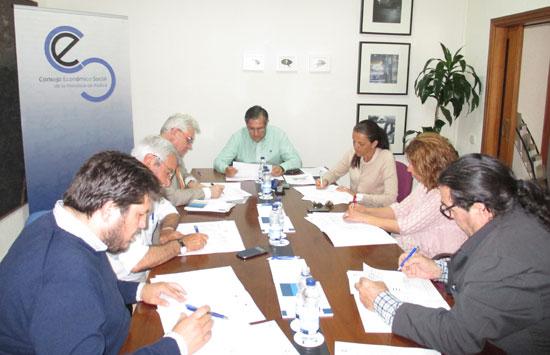 La Comisión Permanente del CESpH se ha reunido recientemente para analizar las distintas peticiones de trabajo que diferentes instituciones y organizaciones han solicitado.