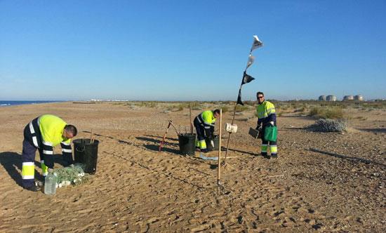 La Concejalía de Infraestructuras y Servicios Municipales del Ayuntamiento de Huelva ha adelantado este año la limpieza de choque de la playa del espigón.