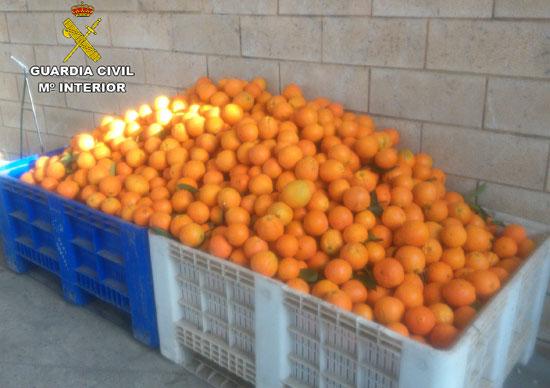 Naranjas intervenidas en un operación policial