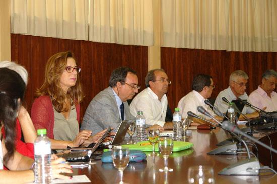 La Universidad de Huelva ha aprobado en su Consejo de Gobierno celebrado esta mañana la solicitud de autorización a la Junta de Andalucía para la contratación de un total de 59 nuevos docentes