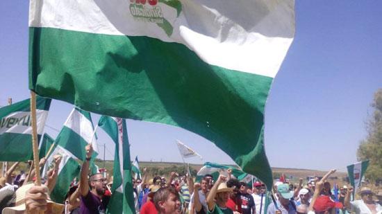Militantes del SAT exigen el tratamiento de los terrenos públicos para su cultivo