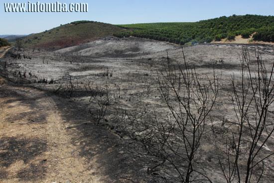 Imagen de un Incendio en Zalamea la Real.