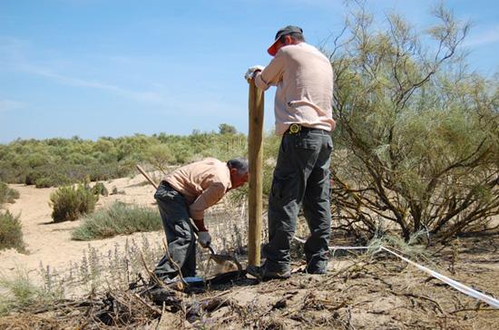 Imagen de técnicos medioambientales trabajando.