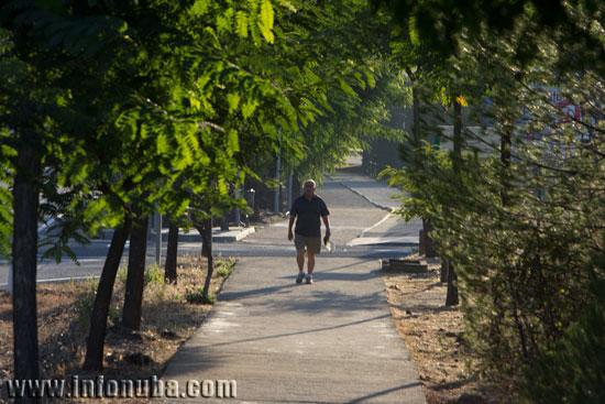 Una persona pasea entre arboles en un municipio onubense.