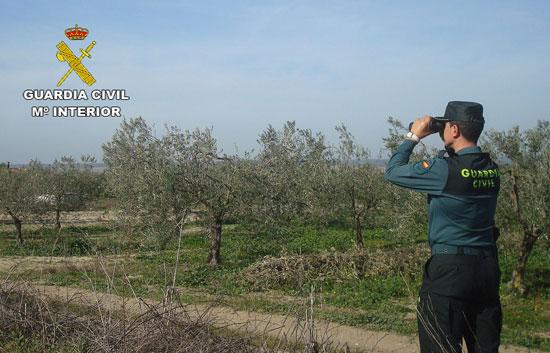 Un agente de la Guardia Civil realiza labores de vigilancia en los campos agrícolas onubenses.