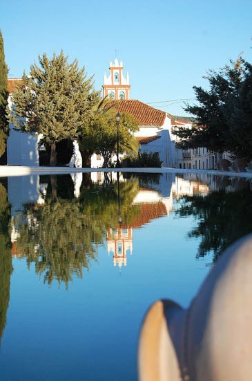 Imagen de Cañaveral de León.