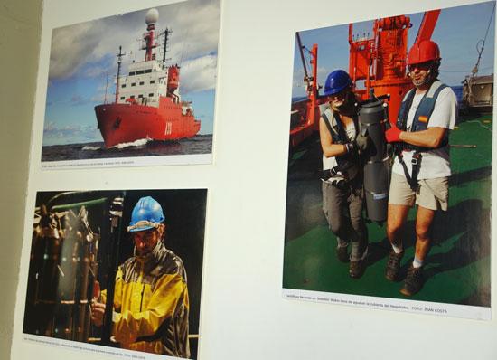 Algunas de las imágenes de la exposición.