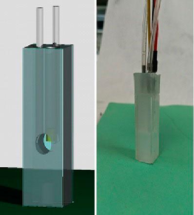 Diseño e imagen del sensor.