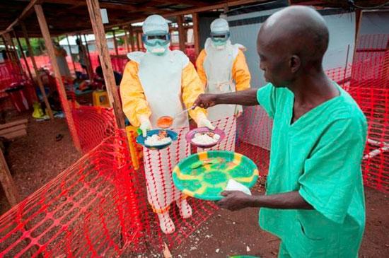 Voluntarios de Cruz Roja ayudan en labores de erudición de enfermedades.