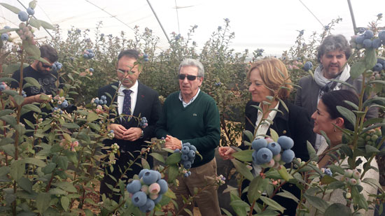 Imagen de la visita de Carmen Ortiz a la empresa Atlantic Blue.