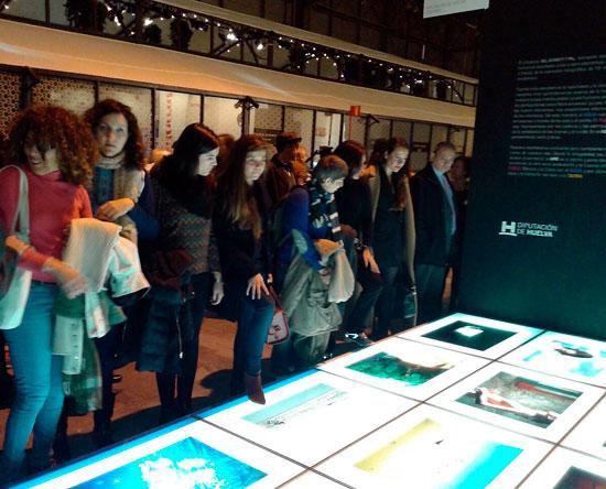 El público observa la obra ELEMENTAL en ARCO2015.
