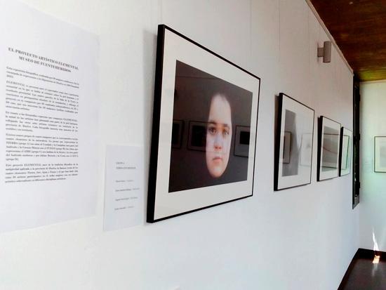"""Imagen de la Exposición """"Elemental"""" en la sala de exposiciones del Museo de Fuenteheridos."""