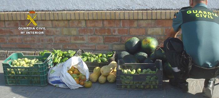 una agente contabiliza las frutas y verduras sustraídas.