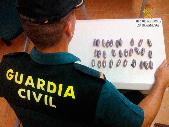 Un agente de la Guardia Civil muestra las bellotas incautadas.