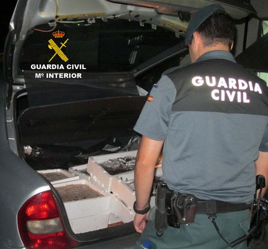 Un agente de la Guardia Civil observa el pescado inmaduro intervenido en Isla Cristina.