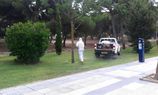 Un operario aplica un tratamiento contra los mosquitos.