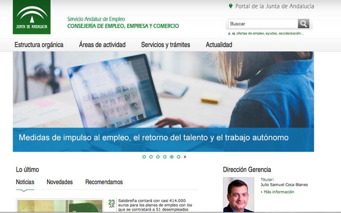 Imagen de la nueva imagen de la web de SAE.