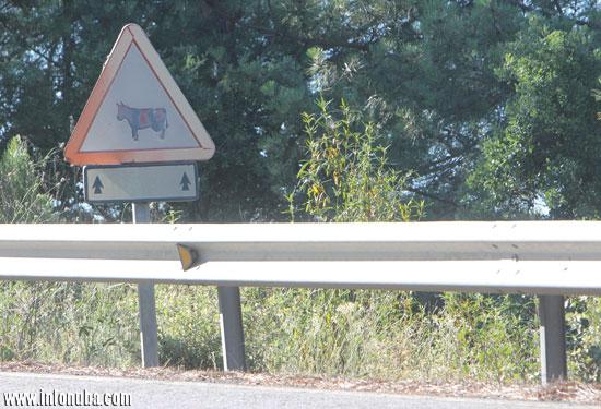 Imagen de la señal afectada por el paso del tiempo.