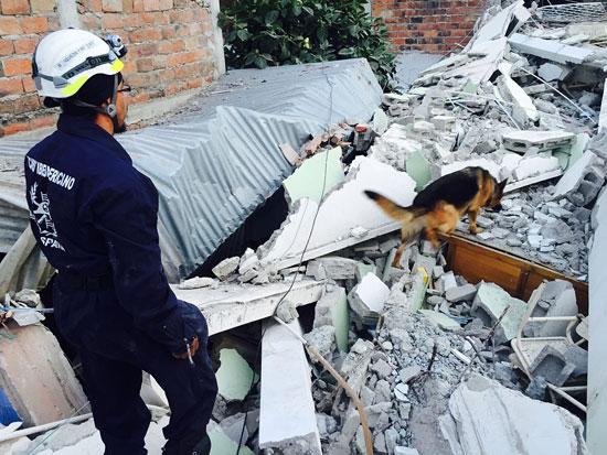 Imagen de uno de los trabajos de rescate de BUSF.