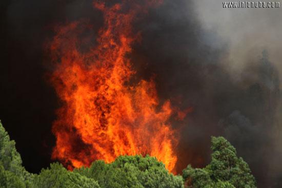 Las llamas alcanzaron una altura de decenas de metros.