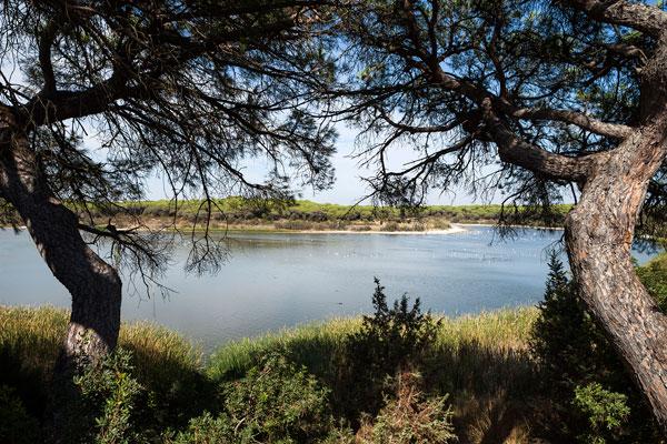 Imagen de la Laguna de El Portil