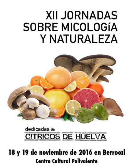 XII Jornadas sobre Micología y Naturaleza de Berrocal