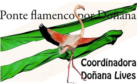 """""""Ponte Flamenco por Doñana"""""""