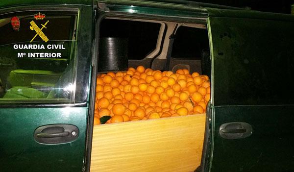 Imagen de las naranjas en el interior del vehículo.