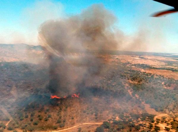 Imagen aérea del incendio en la tarde de hoy.