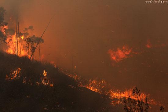 Imagen del incendio en la jornada de ayer.