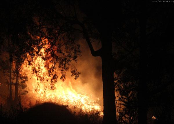 Imagen del fuego.