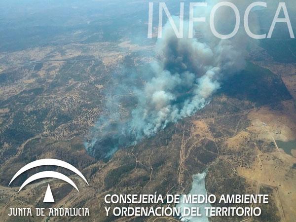 Imagen del incendio en la tarde de ayer.