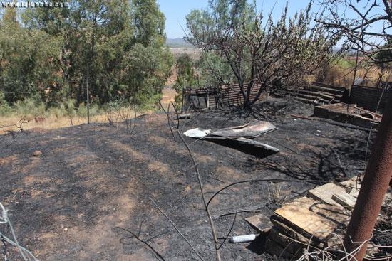 Imagen de la zona quemada.