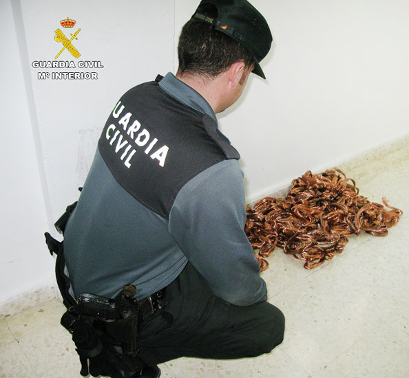 Un agente de la Guardia Civil muestra el material intervenido.