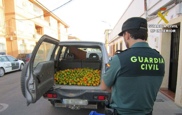 Un agente custodia las frutas intervenidas.