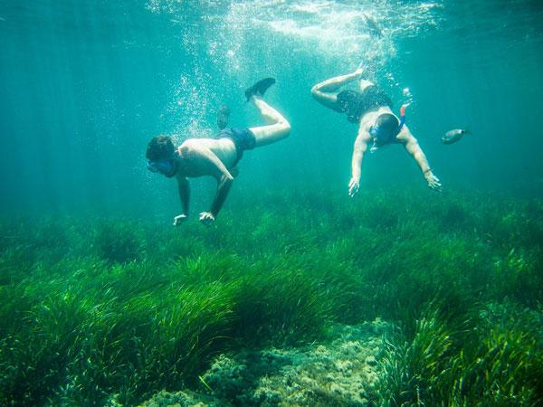 Dos personas practican submarinismo en la costa almeriense.