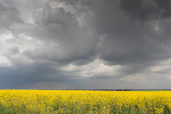 Cielo tormentoso a las afueras de Ávila. Foto: Joaquí Terán (UPA).