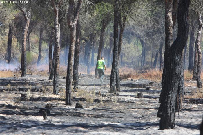 Un agente de la Guardia Civil, durante el incendio en Moguer este verano.