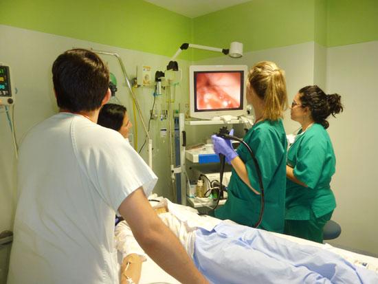 En la imagen, los profesionales del servicio de Pediatría realizan una endoscopia digestiva a un menor.