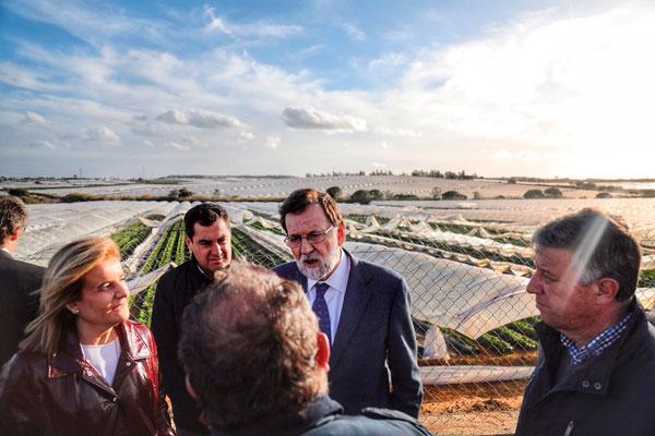 El presidente del Gobierno, Mariano Rajoy, conversa en Lepe (Huelva) con los trabajadores de una cooperativa que se han visto afectados por el temporal.