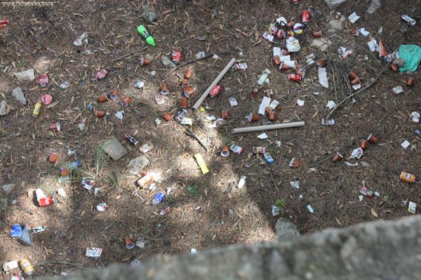Imagen de los diferentes residuos lanzados al interior de las instalaciones del IES Cuenca Minera.