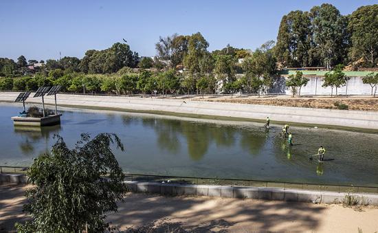 Operarios del Ayuntamiento de Huelva realizan labores de limpieza en la laguna del Parque Moret.