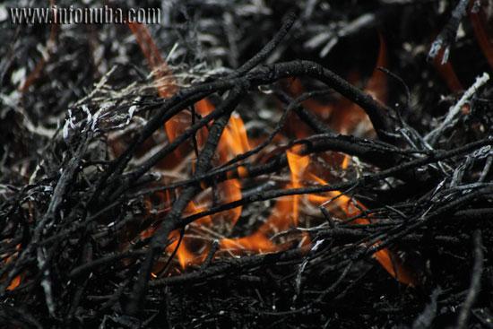 Imagen de un incendio en la provincia de Huelva.