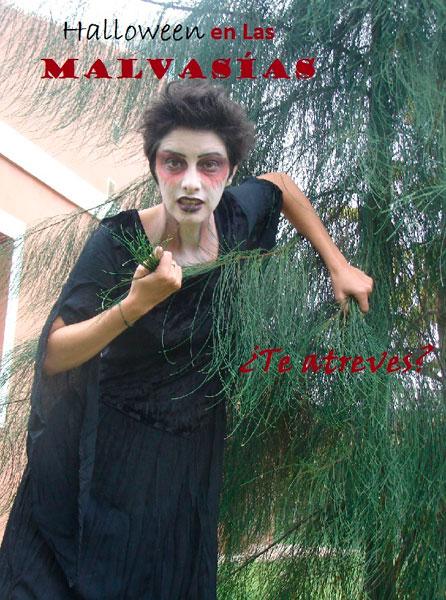 """Imagen del cartel de la """"Noche de Halloween"""" en el Hotel Cortijo Las Malvasias."""