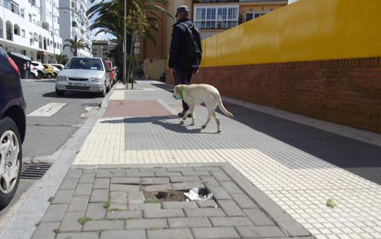 Imagen de un alcorque vacío en la calle Diego de Almagro de la ciudad de Huelva.