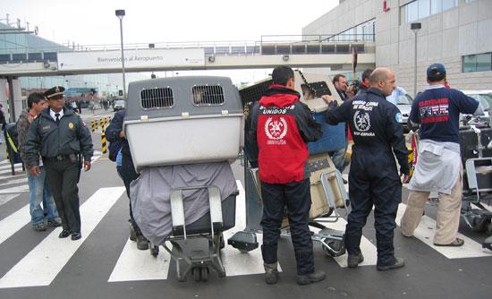 Imagen de los bomberos en el aeropuerto.