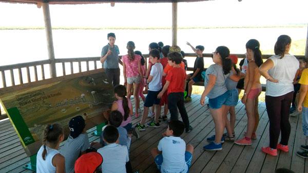 Visita de escolares a la Reserva de la Biosfera Marismas del Odiel dentro del programa 'Mi marisma, mi escuela'
