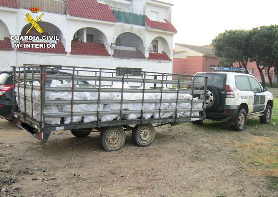 Un vehículo de la Guardia Civil transporta las piñas incautadas.